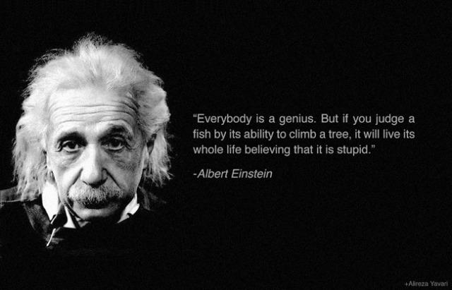 wisdom einstein