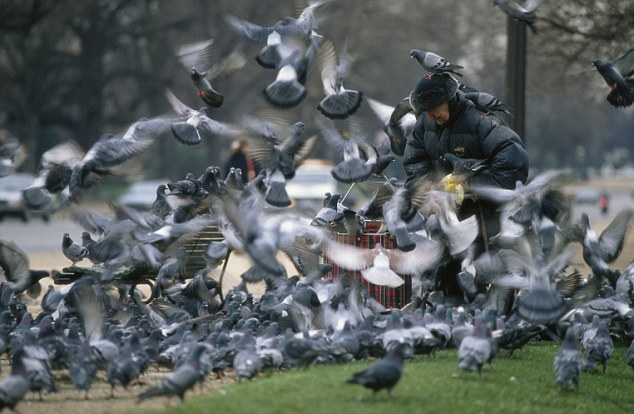 20 Feb 1989, Paris, France --- In a Parisian park, a woman feeds pigeons flying all around her. --- Image by © Bernard Bisson/Sygma/Corbis